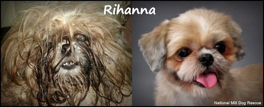 Rihanna before and after.DONE